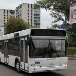 На воронежских дорогах уже есть новые автобусы