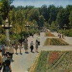 Старое фото парка Динамо в Воронеже
